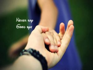 very cute beautiful couples hands facebook profile pictures
