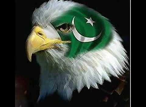 14 August Independence Day Profile Picture