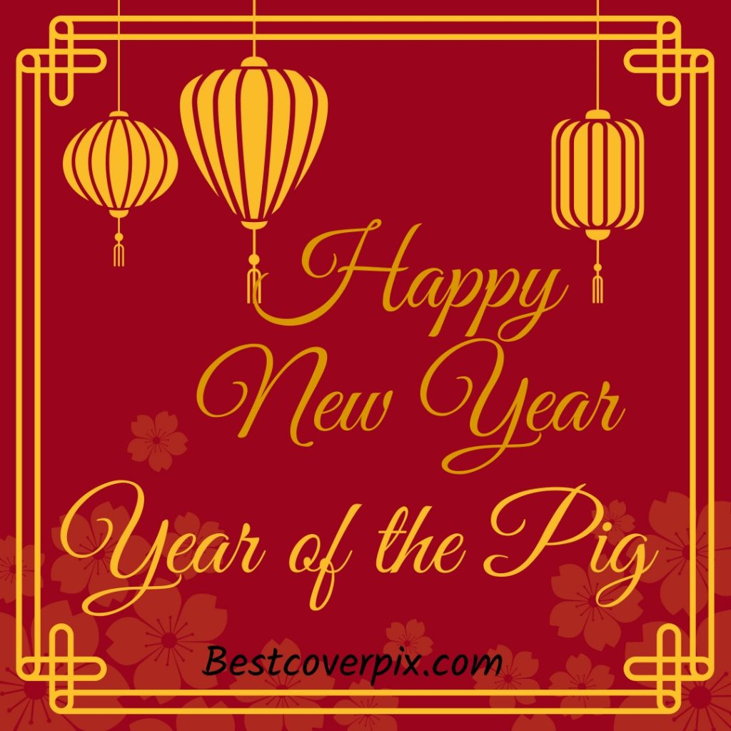 Chinese New Year - Year of the Pig Profile Pic